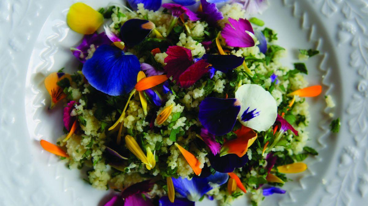 equinox fleurs comestibles vari t s annuelles vivaces bulbes sauvages couleurs parfum. Black Bedroom Furniture Sets. Home Design Ideas