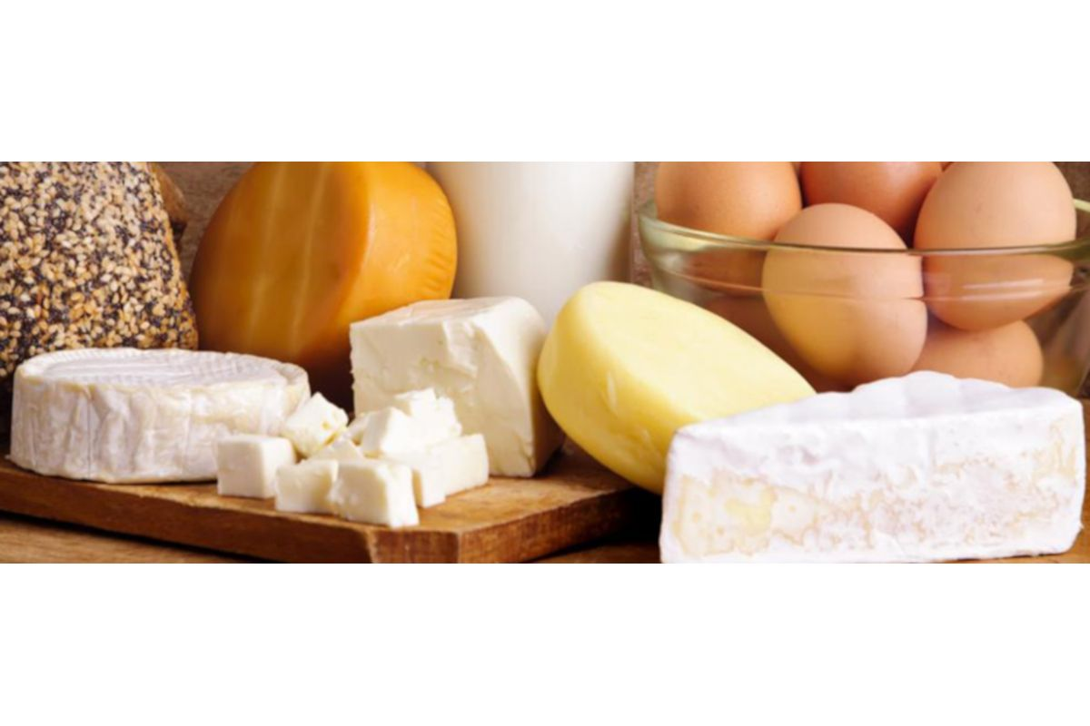 Fromagerie des Cantons, fromagerie, fromage, yogourt,